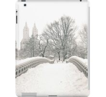 Winter View - Bow Bridge - Central Park - New York City iPad Case/Skin