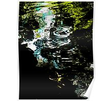 Meandering Reflections  Poster