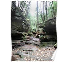 Rocky Forest Path Poster