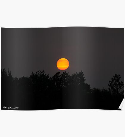 Bushfire Sunset Poster