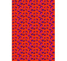 Bright Bold Abstract Patterned Contrasting Color Mix Photographic Print