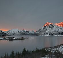 Austnesfjord at Sunset by Kasia Nowak