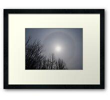 Sun Halo Through the Trees Framed Print