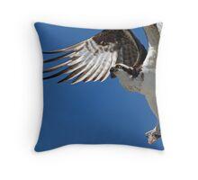 An Osprey in flight Throw Pillow