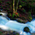 The River by Imi Koetz