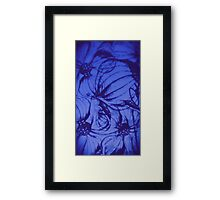 Hawaiin Breeze Dark Blue Framed Print