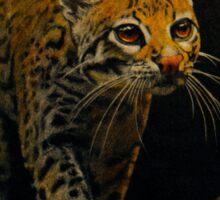 Ocelot Prowl Sticker