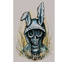 Smoking rabbit Photographic Print