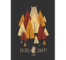 hide and seek Photographic Print
