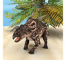 Dinosaur Einiosaurus Photographic Print