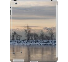 Two Swans, Sleeping - Serene Winter Lake Scene iPad Case/Skin