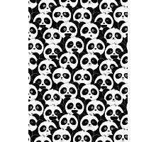 Some Pandas on Black Photographic Print
