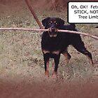 Rottweiler Size Stick by WildestArt