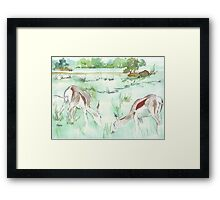 Sketching in the Game Reserve - Springbuck Framed Print