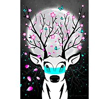 Roots To Grow and Wings To Fly (Cherry Blossom Deer) Photographic Print