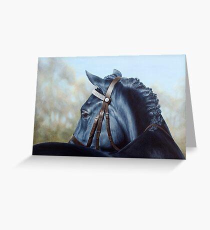 Welsh Cob - Horse Portrait Greeting Card