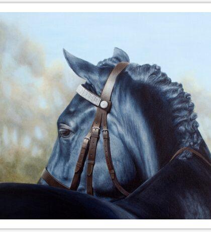 Welsh Cob - Horse Portrait Sticker