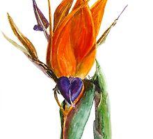 Bird of Paradise Flower by IrVia