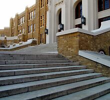 Steps Of Central High by WildestArt