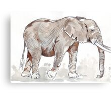 Elephant rumble Canvas Print