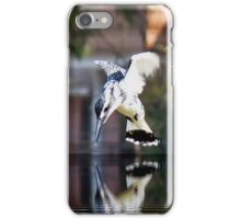 Pied Kingfisher iPhone Case/Skin
