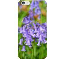 Flowers of wild hyacinth in Hallerbos iPhone Case/Skin
