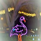 Flamingo on a night stroll by ♥⊱ B. Randi Bailey