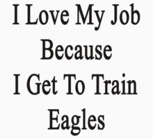 I Love My Job Because I Get To Train Eagles  by supernova23