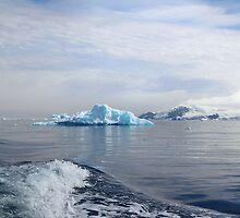 Zodiac Cruising in Cierva Bay, Antarctica by Carole-Anne