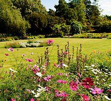 Brodick Castle Gardens by Stephen Smith