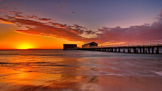 """Queenscliff Summer Dawn"" by Phil Thomson IPA"