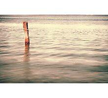Standing alone in Homebush Photographic Print