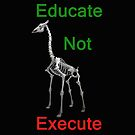 Educate Not Execute,T Shirts & Hoodies. ipad & iphone cases by Eric Kempson