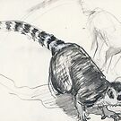 Lemur Lunge by WoolleyWorld