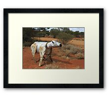 Clara The Cow  Framed Print