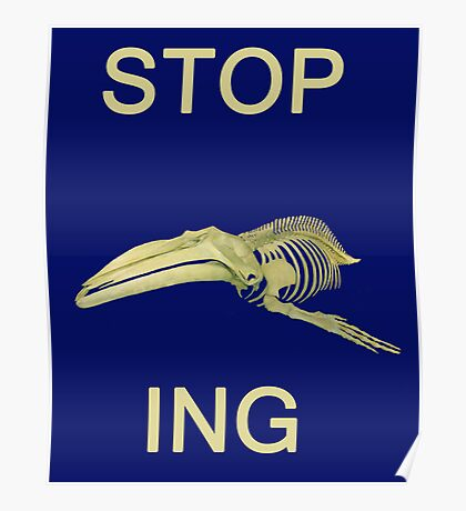 STOP Whaling  Poster