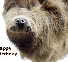 Sloth Birthday Card by Lorna Mulligan