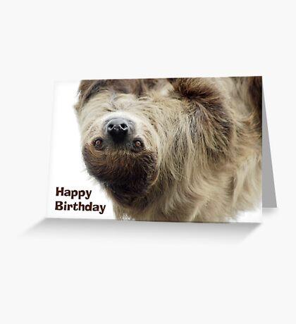 Sloth Birthday Card Greeting Card