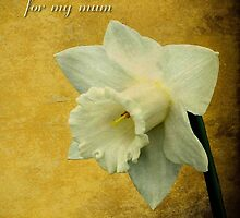 for my mum - the golden lady in my life by missmoneypenny