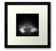 ©HCS-GS The Tree II Monochromatic Framed Print