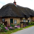 A Charming Cottage at Leckford by hootonles