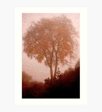 On A Foggy Ambleside Morning .. Art Print