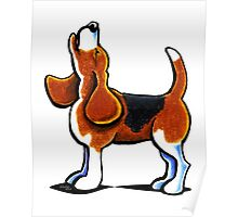 Tricolor Beagle Bay Poster