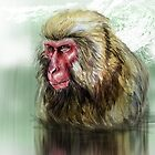 Macac Snow Monkey by Mark Dickson