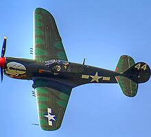 Curtiss P-40M Kittyhawk - Shoreham 2013 by Colin  Williams Photography