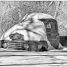 Snowed In Oldie Black And White by Thomas Young