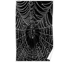 The Black Web Poster
