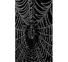 The Black Web Photographic Print