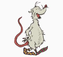 The Opossum with Awesome Socks by SophieJewel