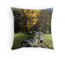 Dry Stone Walling Throw Pillow